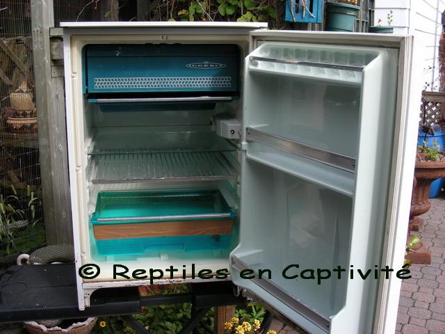 incubateur reptile frigo